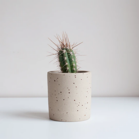 Medium Speckled Planter