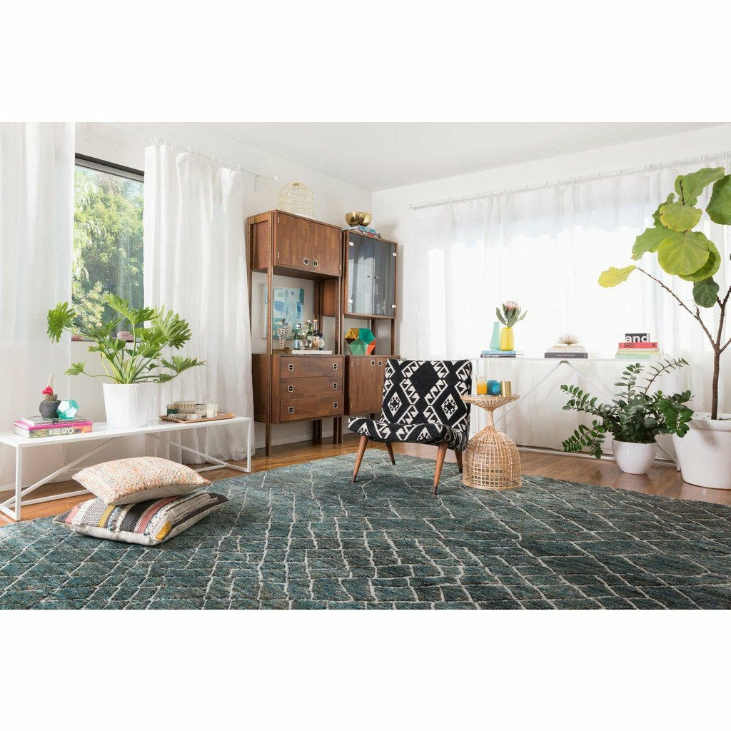 Loloi Sahara SJ-08 Transitional Hand Knotted Area Rug
