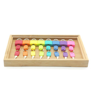 Montessori Color Matching Lock Set montessori toys for 2 3 4 5 year olds