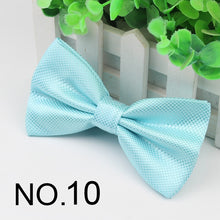 Load image into Gallery viewer, Hot Selling Formal Plaid Bow Ties Mens Solid Color Fashion Marriage Wedding Party Bow Ties