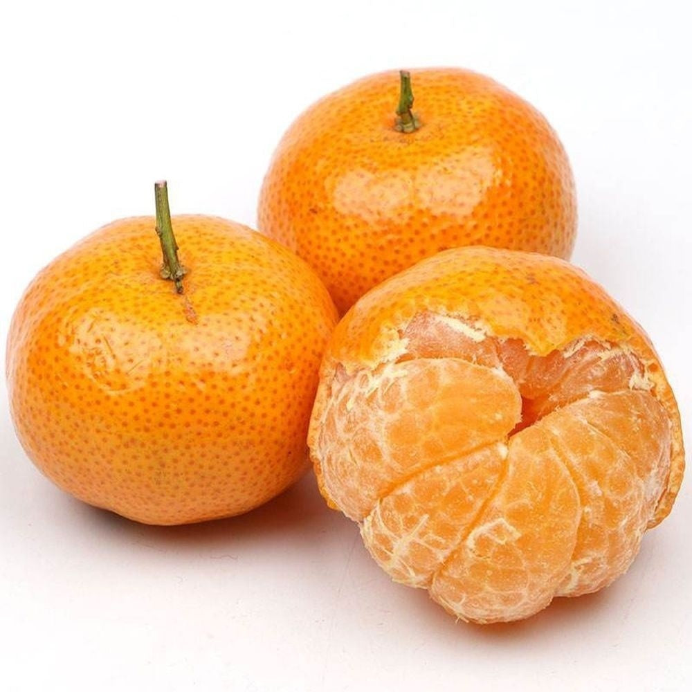 20 Pcs Mini Potted Edible Fruit Seeds Bonsai Orange Seeds China Climbing Orange Tree Seeds Climbing Plants for Garden Decor