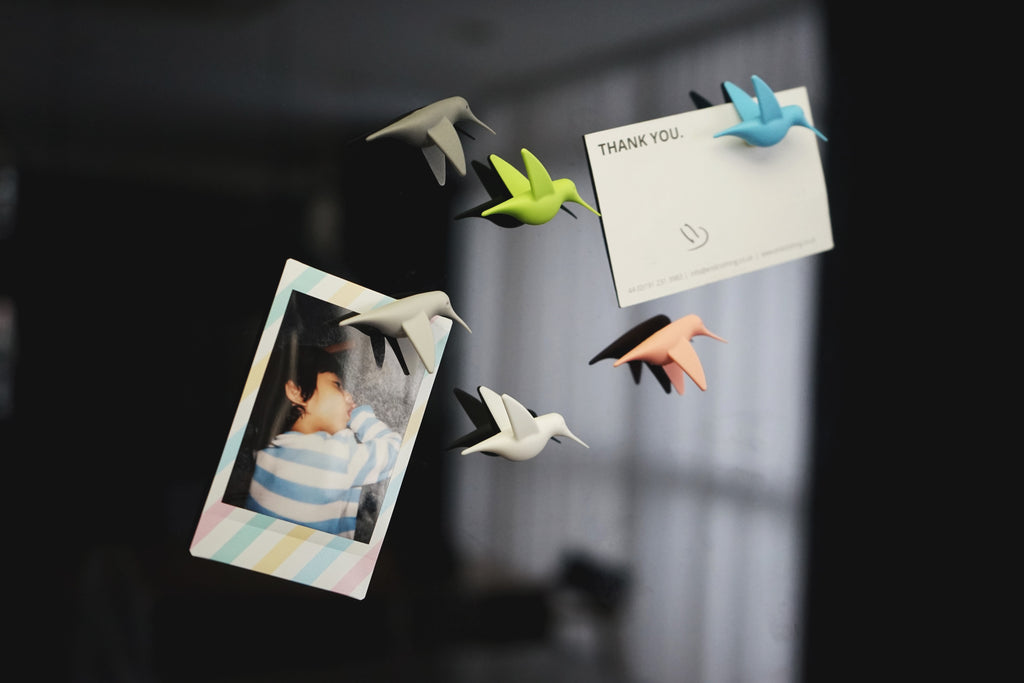 Qualy Humming Bird's magnet sets PT