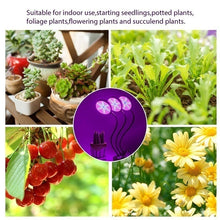 Load image into Gallery viewer, Plant Grow Light 30W (15Wx2) Dual Head LED Plant Growing Lamps Bulbs Clip on Desk with 360 Degree Adjustable Gooseneck for Indoor Plants Hydroponics Greenhouse Garden Home Office USB Plug