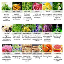 Load image into Gallery viewer, 1PC 10ml 100% Pure & Natural Aromatherpy Aroma Essential Oil Lavender/Rose/Jasmine Pure Plant Essential Oil Therapeutic 26 Flavours