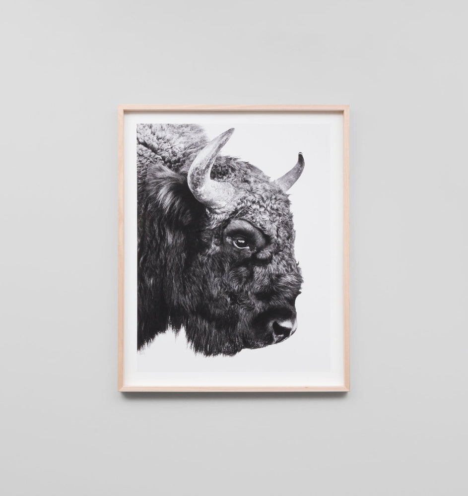 Buy Bison Print online at - Sofas Direct