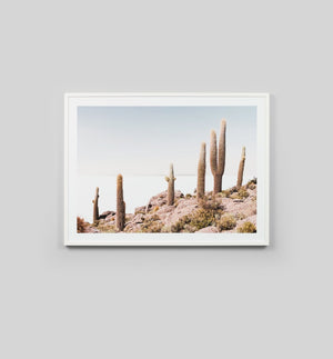 Buy Cactus View Print online at - Sofas Direct