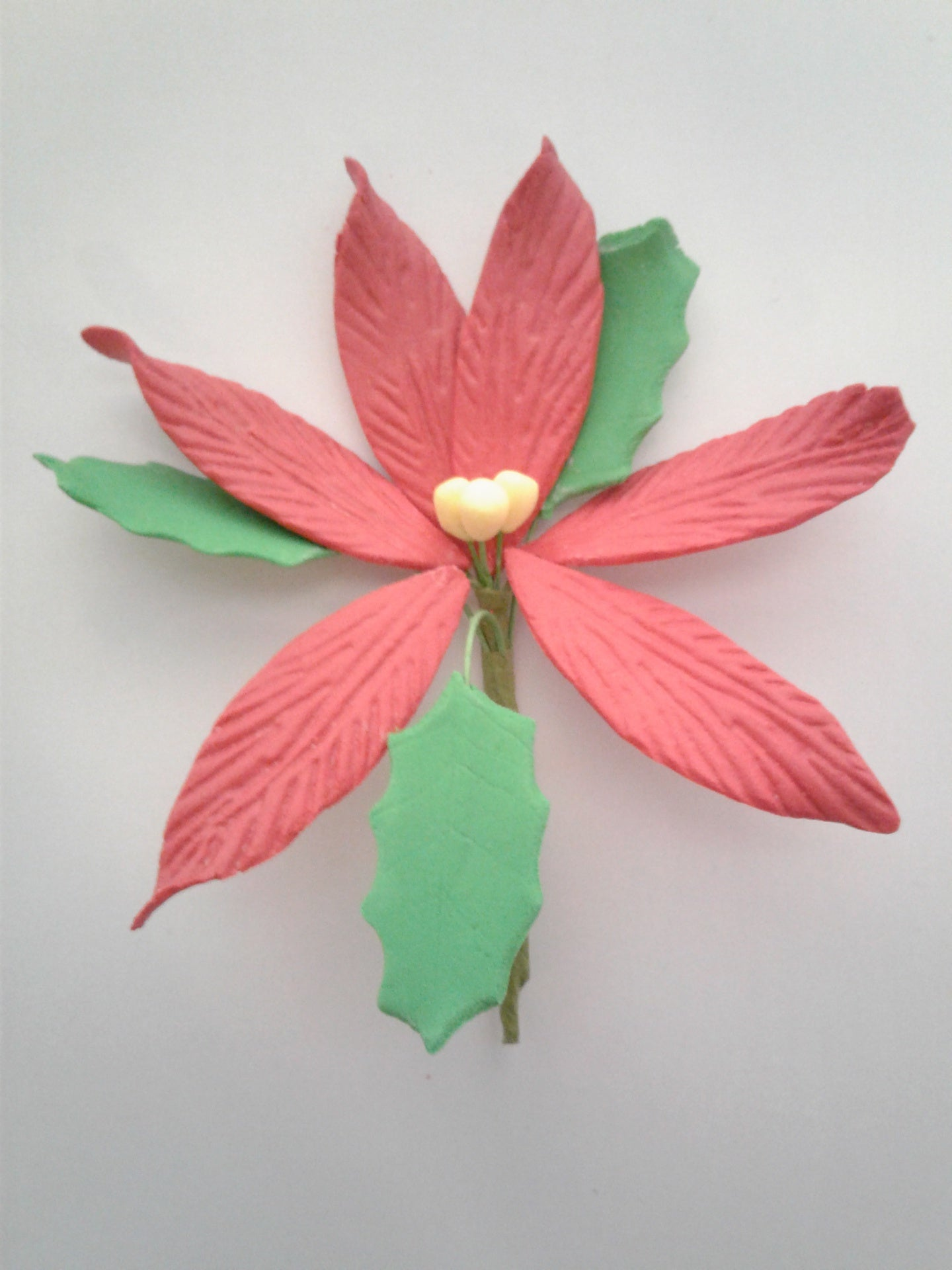 Poinsettia Edible Flower Large