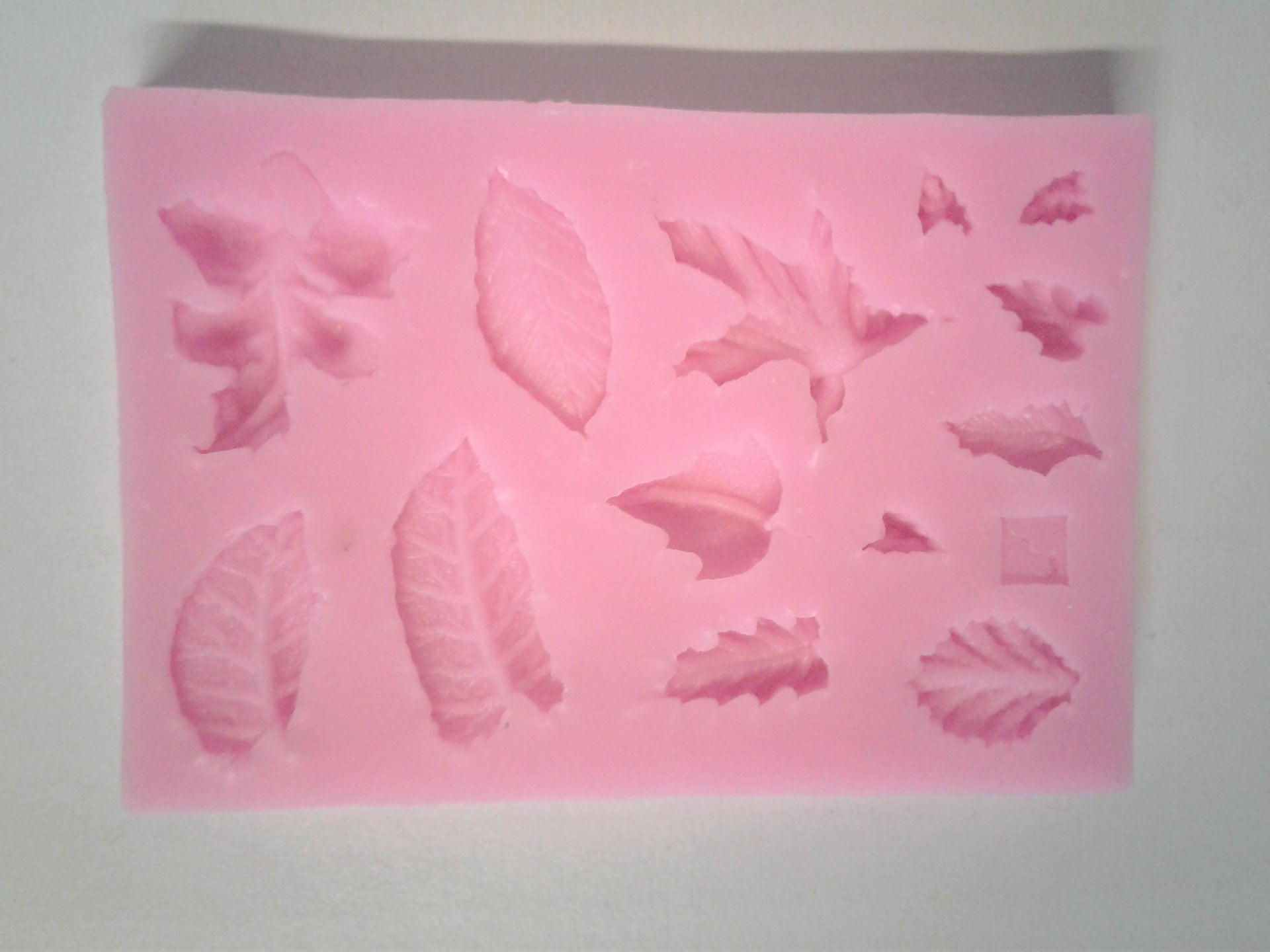 Leaves Mix Silicone Mold