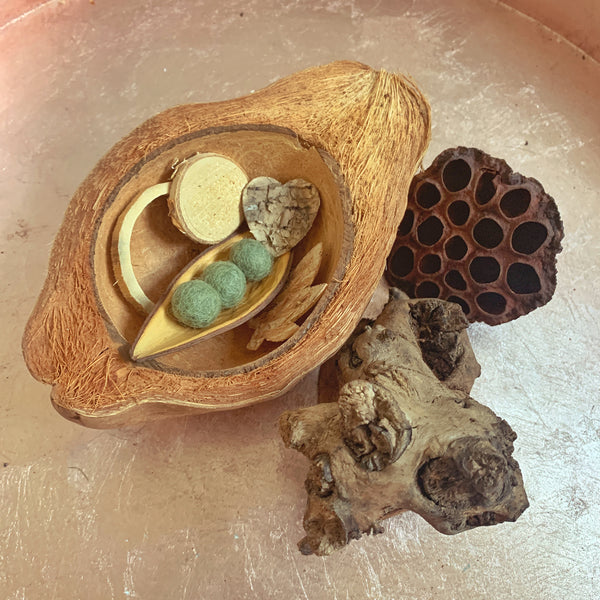 natural treasure basket with coconut husk bowl, lotus head, birch bark, mulberry root, bamboo ring. coco boat, felt balls pea pod