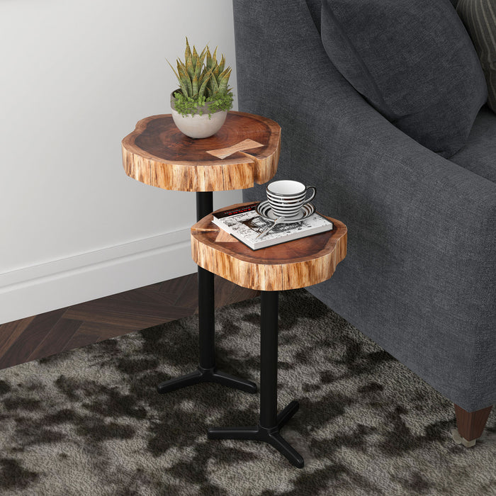 KEYA-SET OF 2 ACCENT TABLE-NATURAL