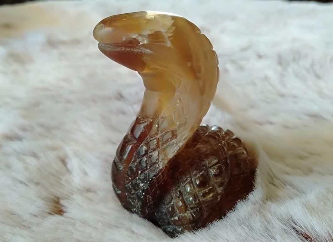 Smokey Quartz cobra