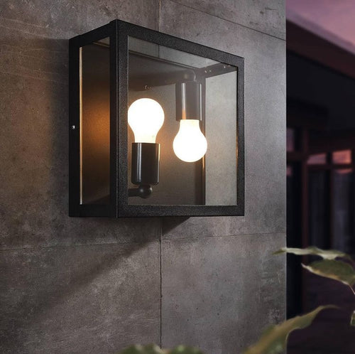 Alamonte 2 Light Outdoor Black and Clear Glass Wall or Ceiling Light - Lighting.co.za