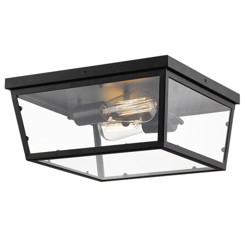 Dseta Black And Clear Glass Outdoor Ceiling Light - Lighting.co.za
