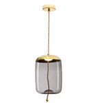 DROPLET GLASS BEE HIVE LED GOLD AND ROPE PENDANT - Lighting.co.za