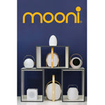 MOONI OVO SPEAKER LANTERN WITH WOODEN HANDLE - Lighting.co.za