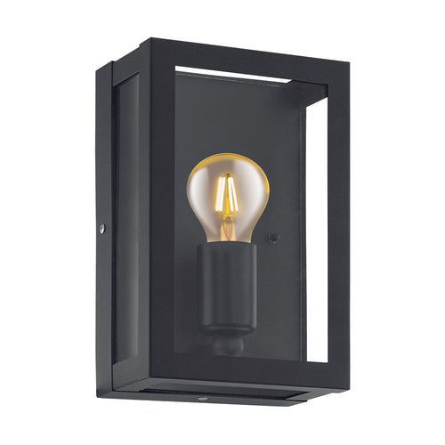 Alamonte Outdoor Black and Clear Glass Wall Light - Lighting.co.za