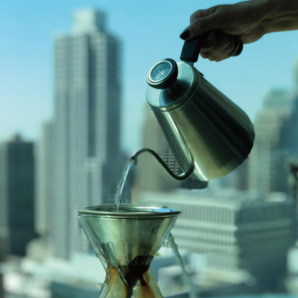 OVALWARE Pour Over Kettle w/Built-In Thermometer