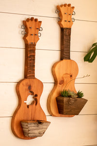 Turtle ukulele planter
