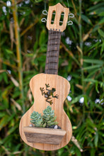 Load image into Gallery viewer, Frog ukulele planter