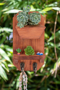 Wooden planter with one shelf and two hooks. Reddish Brown color and great for succulents or air plants.