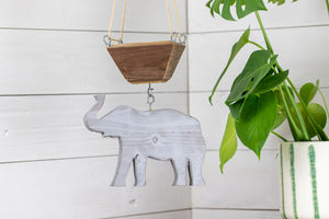 Grey elephant hanging from succulent planter