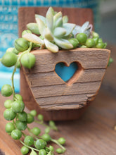 Load image into Gallery viewer, Small succulent planter