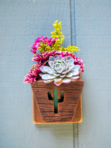 Cactus Planter for Wall