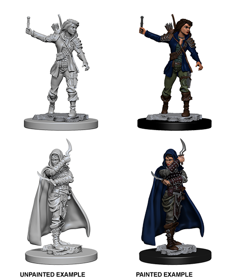 Pathfinder Deep Cut Human Female Rogue