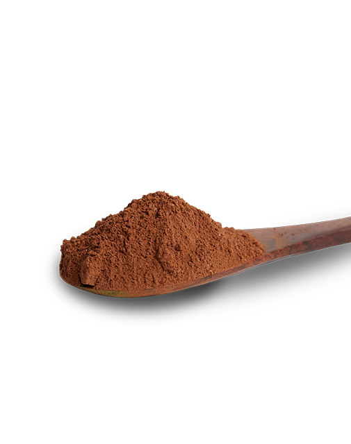 Premium chocolate powder