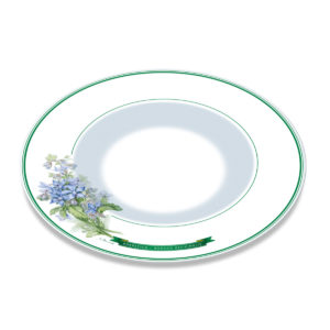 A white bone china plate with green borders and illustration of borage plant