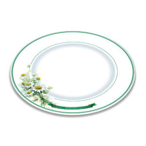 A white bone china plate with green borders and illustration of chamomile