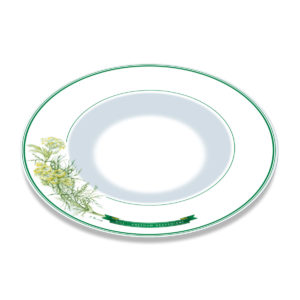 A white bone china plate with green borders and illustration of dill plant