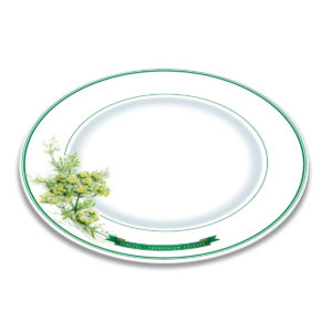 A white bone china plate with green borders and illustration of fennel