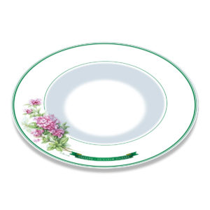 A white bone china plate with green borders and illustration of oregano