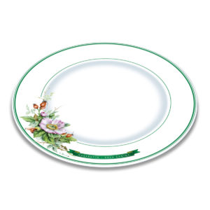 A white bone china plate with green borders and illustration of rose hip