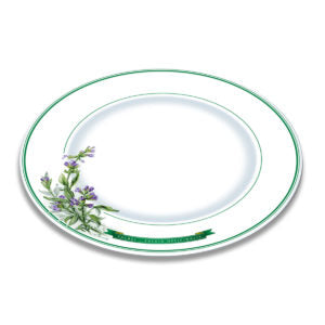 A white bone china plate with green borders and illustration of sage