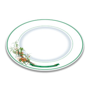 A white bone china plate with green borders and illustration of sea buckthorn