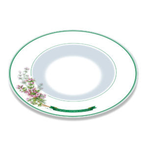 A white bone china plate with green borders and illustration of thyme