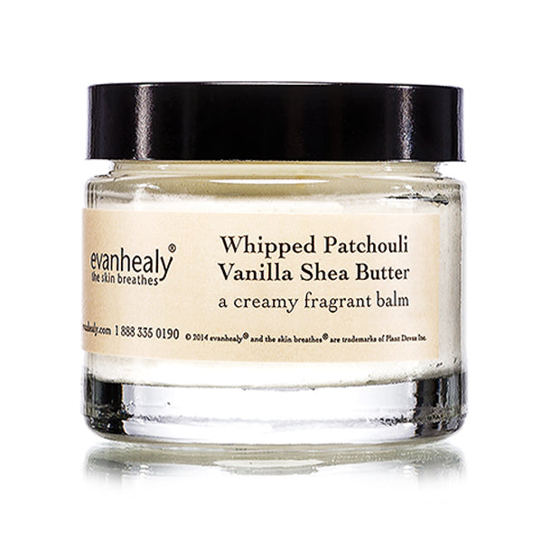 A small white jar of evanhealy whipped shea butter with a black lid