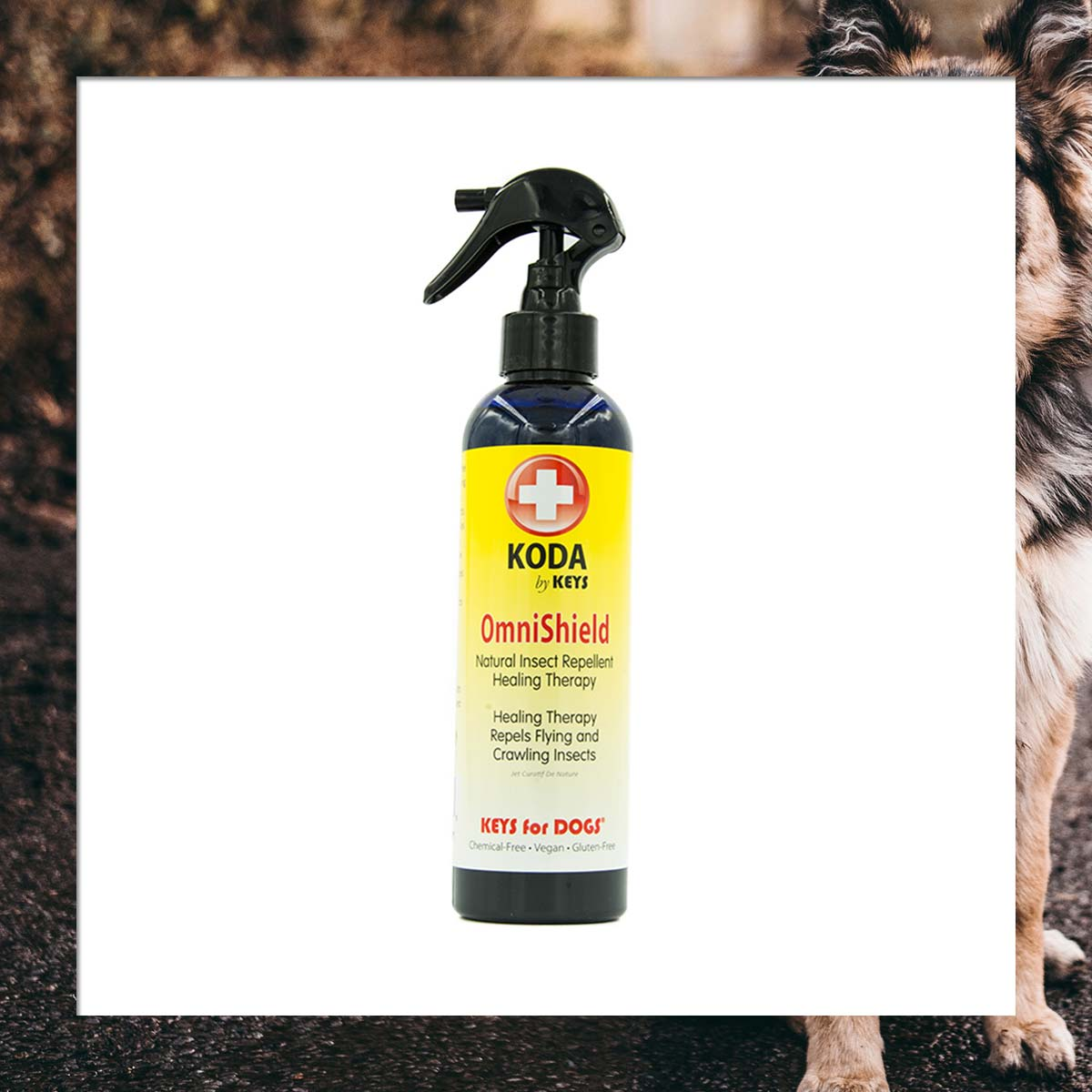 A spray bottle of Keys Koda OmniShield Insect Repellent for Dogs