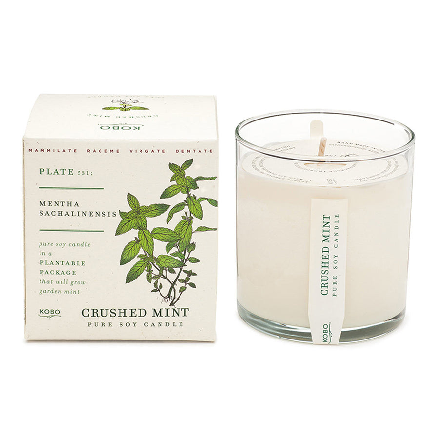 Primary image of Crushed Mint Candle with Plantable Box