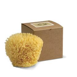 Primary image of Baudelaire Wool Sponge 4.5 4.5 inches Sponge