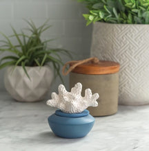 Load image into Gallery viewer, Coral Porcelain Diffuser