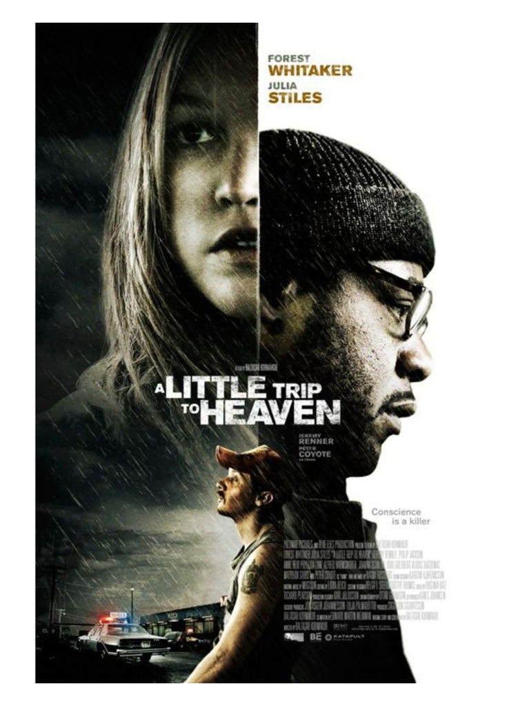 A Little Trip To Heaven DVD