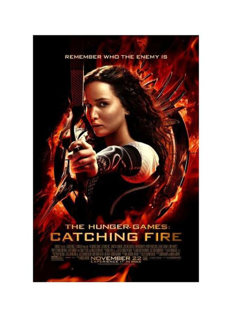 The Hunger Games: Catching Fire (2013) DVD