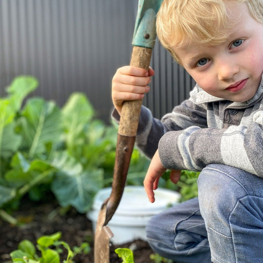 Kids Croppers Grow Kit