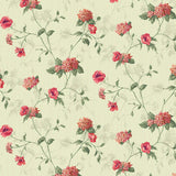 Cream And Melon Orange Floral Pattern Digital Print Curate