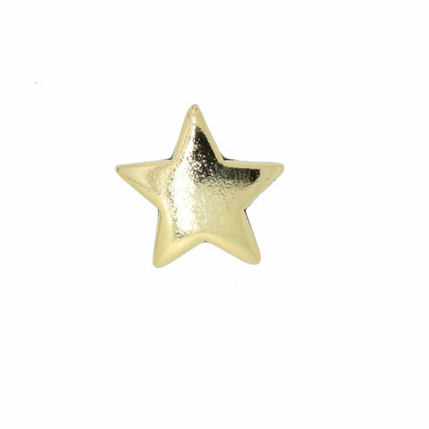 Star Gold Lapel Pin