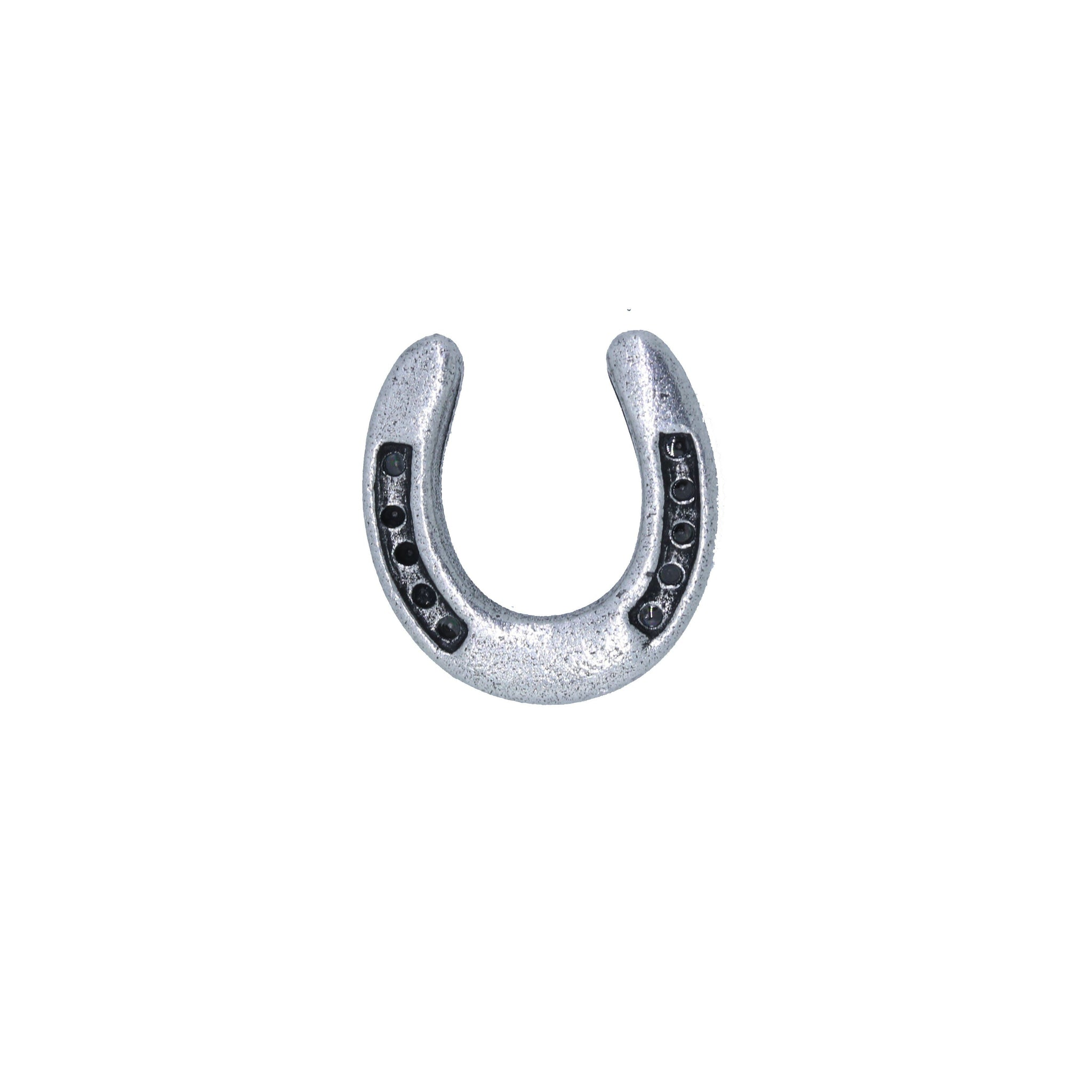 Horseshoe Lapel Pin