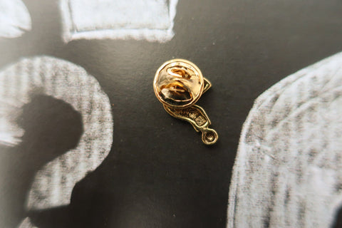Question Mark Gold Lapel Pin